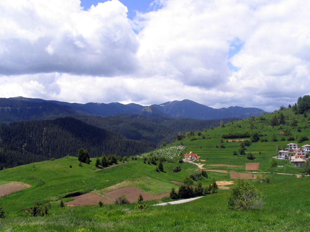 Село Стойките2