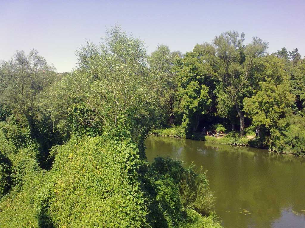 Река Искър при Роман2