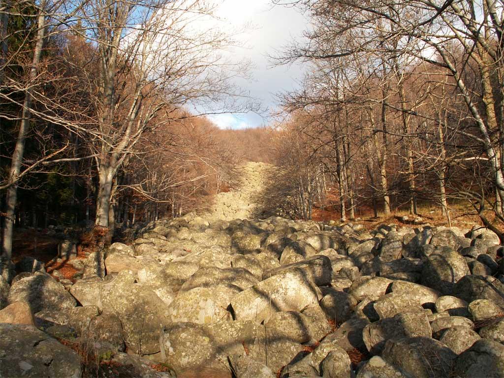 каменните реки (морени) на Витоша над хижа Селимица